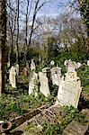 Graves at Highgate Cemetery, London, England, United Kingdom, Europe Stock Photo - Premium Rights-Managed, Artist: Robert Harding Images, Code: 841-06503349