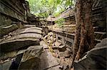 Ta Prohm Temple, Angkor, UNESCO World Heritage Site, Siem Reap, Cambodia, Indochina, Southeast Asia, Asia Stock Photo - Premium Rights-Managed, Artist: Robert Harding Images, Code: 841-06503415