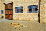Two Dogs Sleeping in front of Stone Building with Barred Windows, Morocco, Africa Stock Photo - Premium Rights-Managed, Artist: Jochen Schlenker, Code: 700-06505754