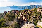 Overview of Calanques de Piana, Corsica, France Stock Photo - Premium Rights-Managed, Artist: F. Lukasseck, Code: 700-06512707