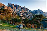 Aiguilles de Bavella (Bavella Needles) and pine trees on the 1,218 m Col de Bavella (Bavella pass), Corsica, France Stock Photo - Premium Rights-Managed, Artist: F. Lukasseck, Code: 700-06512717