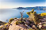 Overview of Calanques de Piana, Corsica, France Stock Photo - Premium Rights-Managed, Artist: F. Lukasseck, Code: 700-06512747