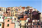 Village of Manarola build on the steep slope, Cinque Terre National Park, UNESCO World Heritage Site, Liguria, Italy Stock Photo - Premium Rights-Managed, Artist: F. Lukasseck, Code: 700-06512752
