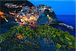Blue hour at clifftop village of Manarola, Tree spurge (Euphorbia dendroides) in front of the village at dusk, Cinque Terre National Park, UNESCO World Heritage Site, Liguria, Italy Stock Photo - Premium Rights-Managed, Artist: F. Lukasseck, Code: 700-06512754