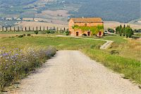 Dirt Road with Farmhouse in Summer, San Quirico d'Orcia, Province of Siena, Tuscany, Italy Stock Photo - Premium Rights-Managednull, Code: 700-06512907