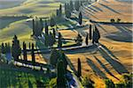 Winding Country Road with Cypress Trees in Summer, Montepulciano, Province of Siena, Tuscany, Italy Stock Photo - Premium Rights-Managed, Artist: Raimund Linke, Code: 700-06512934