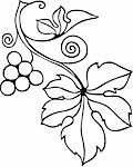 Decorative vine element on white background Stock Photo - Royalty-Free, Artist: Denis_Barbulat                , Code: 400-06513045