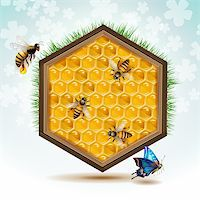 Wood frame with bees and honeycombs Stock Photo - Royalty-Freenull, Code: 400-06513580