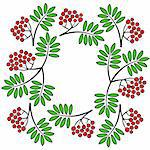 Vector illustration of frame with rowan branch Stock Photo - Royalty-Free, Artist: uiliaaa                       , Code: 400-06520405