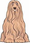 Cartoon Illustration of Cute Bearded Collie Purebred Dog