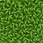 Green leaves pattern. Seamless vector. Stock Photo - Royalty-Free, Artist: 100ker                        , Code: 400-06528895