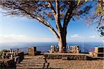 Lookout point of Cabo Girao, Madeira, Portugal Stock Photo - Premium Rights-Managed, Artist: F. Lukasseck, Code: 700-06531528