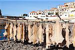 Harbour life with fish drying, Camara de Lobos, Madeira, Portugal Stock Photo - Premium Rights-Managed, Artist: F. Lukasseck, Code: 700-06531530