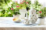 tablesetting with tea, teacup, teapot, cake, and edible geraniums as well as potted flowering geraniums in a garden setting Stock Photo - Premium Rights-Managed, Artist: Yvonne Duivenvoorden, Code: 700-06532026