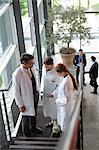 Doctors talking on staircase in office Stock Photo - Premium Royalty-Free, Artist: Blend Images, Code: 649-06532644