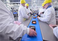 Workers packing fish filets in factory Stock Photo - Premium Royalty-Freenull, Code: 649-06533407