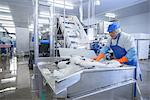 Worker examining fish in factory Stock Photo - Premium Royalty-Free, Artist: Blend Images, Code: 649-06533420