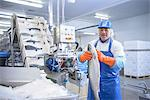 Worker examining fish in factory Stock Photo - Premium Royalty-Free, Artist: Ikon Images, Code: 649-06533421