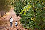 Children walking in autumn leaves Stock Photo - Premium Royalty-Free, Artist: AWL Images, Code: 649-06533549