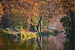 Autumn forest reflected in still lake Stock Photo - Premium Royalty-Freenull, Code: 649-06533554