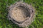 Close up of empty nest Stock Photo - Premium Royalty-Free, Artist: Cultura RM, Code: 614-06536897