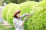 Woman trimming hedges in garden Stock Photo - Premium Royalty-Free, Artist: Cultura RM, Code: 614-06537602