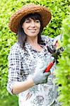 Woman trimming hedges in garden Stock Photo - Premium Royalty-Free, Artist: Blend Images, Code: 614-06537603