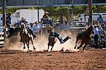 Australia, Queensland, Mt Garnet.  Steer wrestling , also known as bulldogging, competition at Mt Garnet Rodeo. Stock Photo - Premium Rights-Managed, Artist: AWL Images, Code: 862-06540741