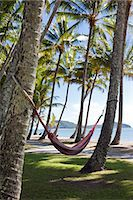 Australia, Queensland, Cairns.  Hammocks amongst coconut palms at Palm Cove. Stock Photo - Premium Rights-Managednull, Code: 862-06540765