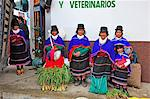 Indian women at a market in Silvia, Guambiano Indians, Colombia, South America Stock Photo - Premium Rights-Managed, Artist: AWL Images, Code: 862-06541092