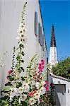 France, Charente Maritime, Ile de Re.  Hollyhocks grow in a quiet side street in the village of Ars en Re, with the distinctive black and white church tower behind. Stock Photo - Premium Rights-Managed, Artist: AWL Images, Code: 862-06541448