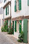 France, Charente Maritime, Ile de Re. Hollyhocks grow outside the houses in a quiet side street in St Martin. Stock Photo - Premium Rights-Managed, Artist: AWL Images, Code: 862-06541465