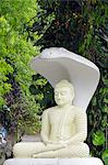 Sri Lanka, Sacred city of Kandy, UNESCO World Heritage Site, buddha statue with cobra head Stock Photo - Premium Rights-Managed, Artist: AWL Images, Code: 862-06543044