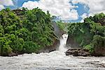 The spectacular Murchison Falls, Uganda, Africa Stock Photo - Premium Rights-Managed, Artist: AWL Images, Code: 862-06543157