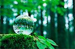 Glass globe Stock Photo - Premium Royalty-Free, Artist: foodanddrinkphotos, Code: 622-06549318
