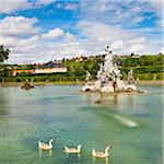 Ducks Swimming in Water Fountain at Veitshochheim Castle, Wurzburg, Lower Franconia, Bavaria, Germany Stock Photo - Premium Rights-Managed, Artist: Siephoto, Code: 700-06553364