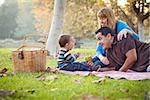 Happy Young Mixed Race Ethnic Family Having a Picnic In The Park. Stock Photo - Royalty-Free, Artist: Feverpitched                  , Code: 400-06557386