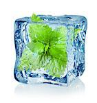 Ice cube and mint isolated on a white background Stock Photo - Royalty-Free, Artist: Givaga                        , Code: 400-06561179