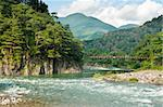 Beautiful landscape in the Japanese mountains with a wild river, red bridge and rock covered by typical pines Stock Photo - Royalty-Free, Artist: Fyletto                       , Code: 400-06569643