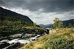 A river Stock Photo - Premium Royalty-Free, Artist: Uwe Umsttter, Code: 6114-06589408