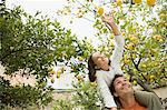 Girl on fathers shoulder carrying picking lemons Stock Photo - Premium Royalty-Free, Artist: R. Ian Lloyd, Code: 6114-06589920