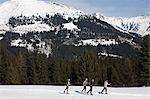 Skiers Stock Photo - Premium Royalty-Free, Artist: Blend Images, Code: 6114-06589940