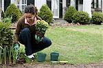 Woman gardening Stock Photo - Premium Royalty-Free, Artist: ableimages, Code: 6114-06590634