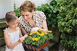 A mother and daughter and gardening Stock Photo - Premium Royalty-Free, Artist: Blend Images, Code: 6114-06591460
