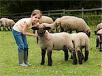 A girl with lambs Stock Photo - Premium Royalty-Free, Artist: Westend61, Code: 6114-06591672
