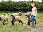 A girl with sheep Stock Photo - Premium Royalty-Free, Artist: Westend61, Code: 6114-06591691