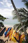 Sarongs drying at the beach Stock Photo - Premium Royalty-Free, Artist: Raymond Forbes, Code: 6114-06593462