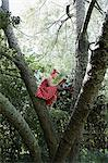 Woman reading a book in a tree Stock Photo - Premium Royalty-Free, Artist: Westend61, Code: 6114-06593770