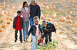 A family walking through a field of pumpkins Stock Photo - Premium Royalty-Free, Artist: Cultura RM, Code: 6114-06594600