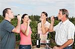 People wine tasting at vineyard Stock Photo - Premium Royalty-Free, Artist: CulturaRM, Code: 6114-06598512